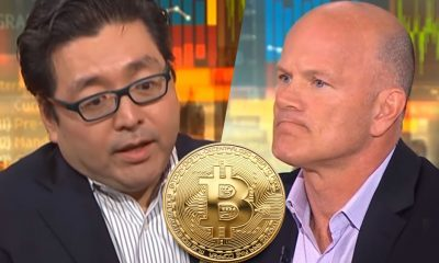 Tom Lee, Mike Novogratz