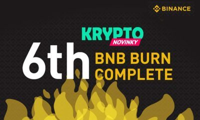Coin Burn binance