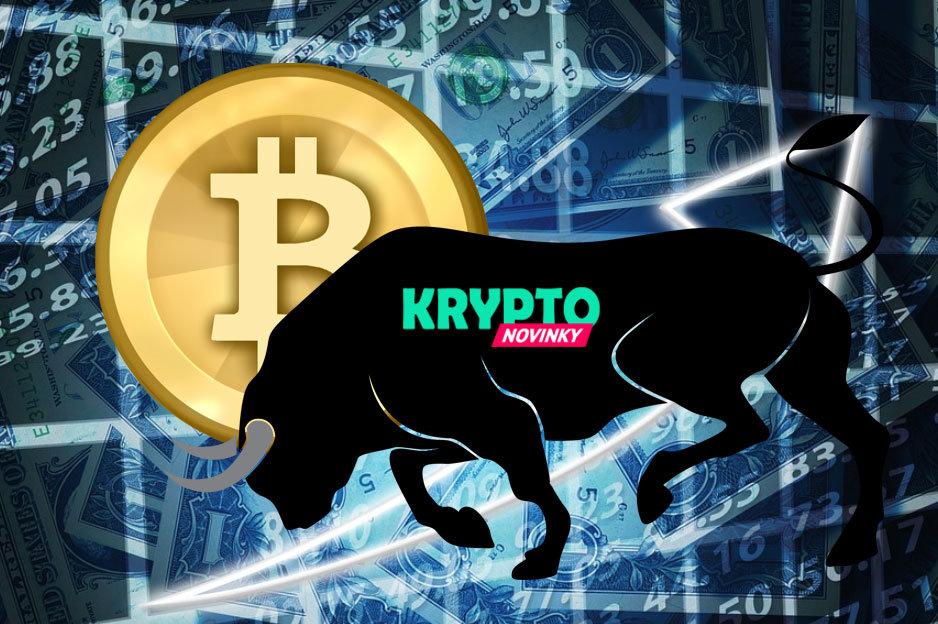 Bitcoin býk