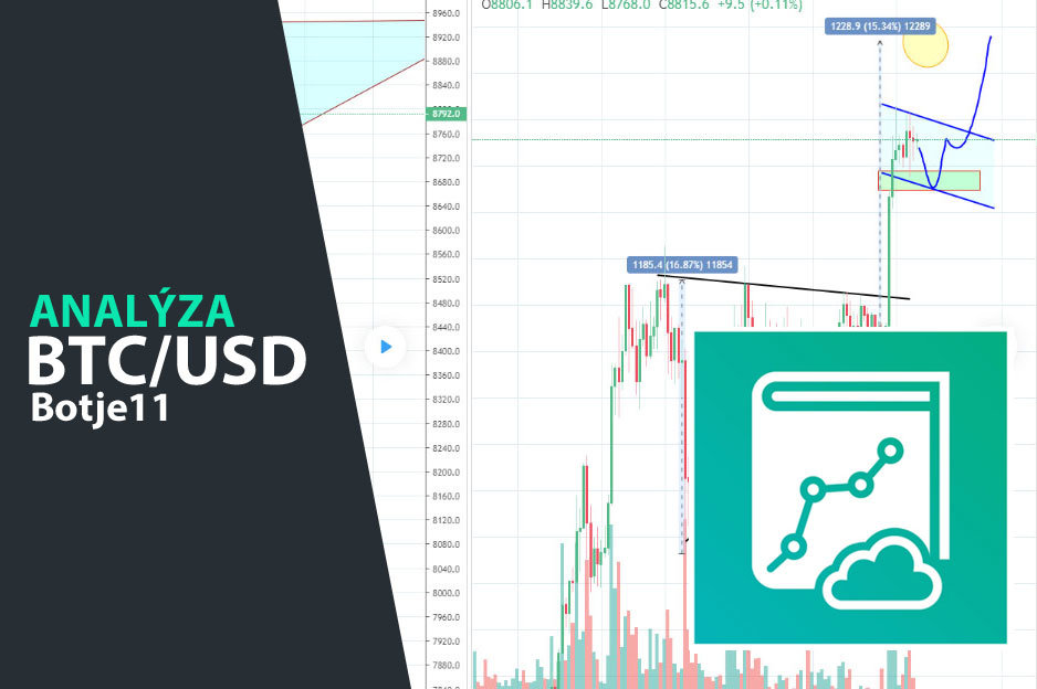 botje-analyza-bitcoin