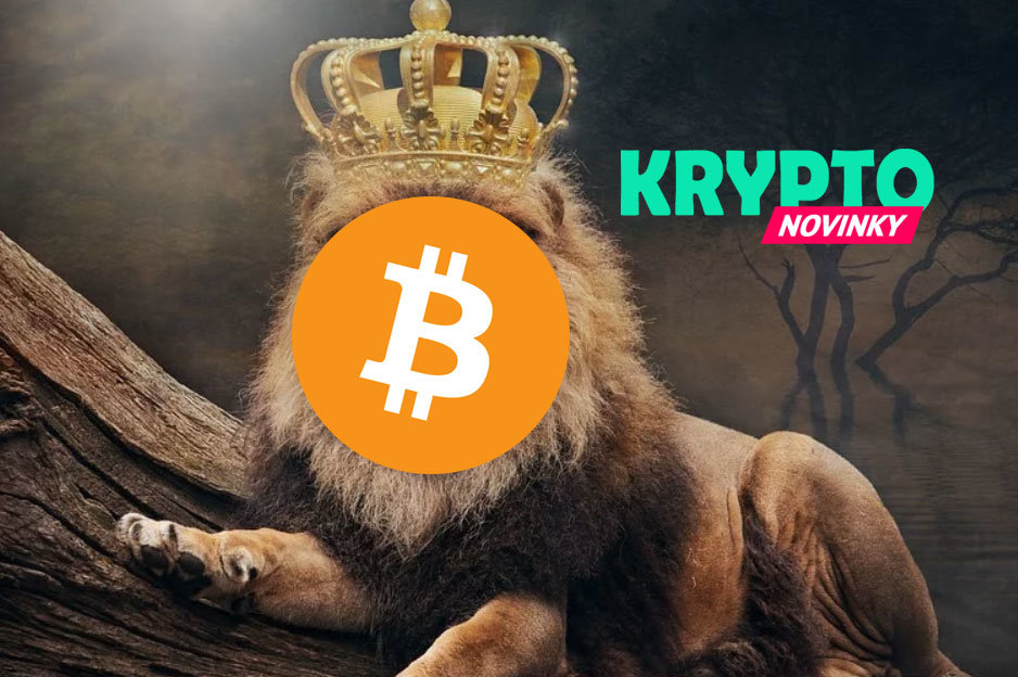 Bitcoin kráľ