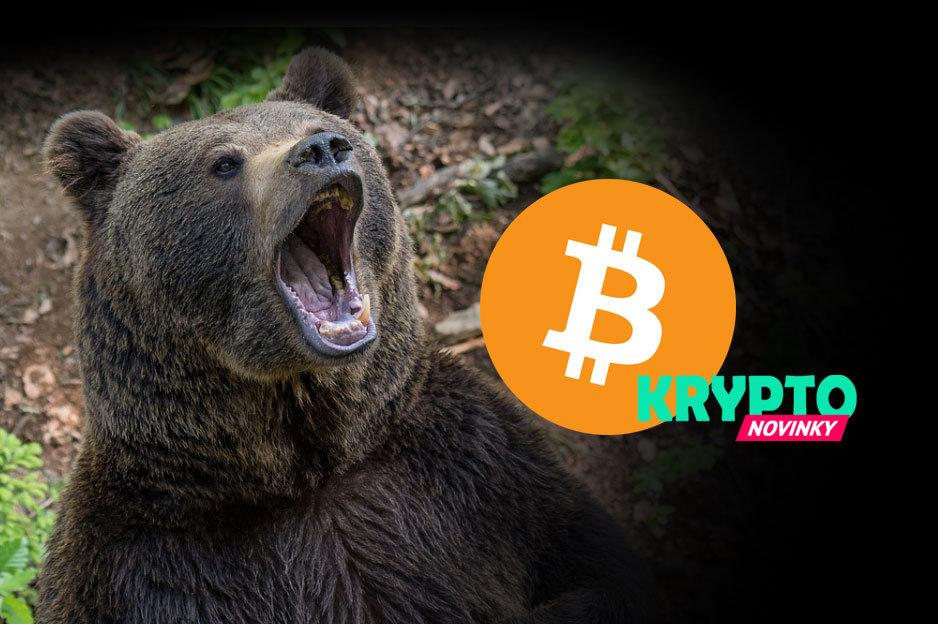 Bitcoin medveď