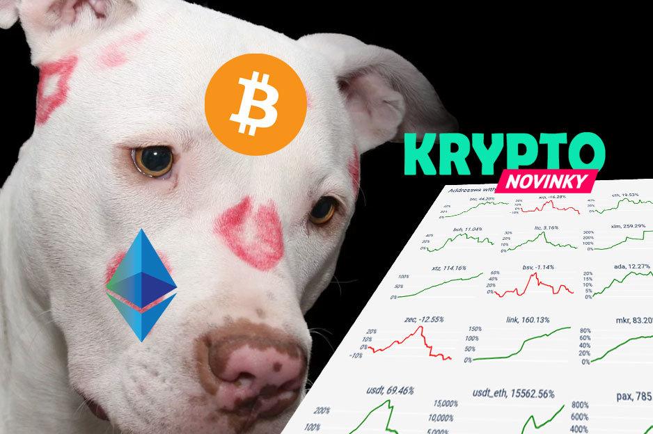 Bitcoin adopcia
