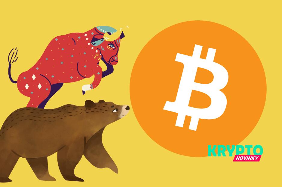 Medveď býk Bitcoin